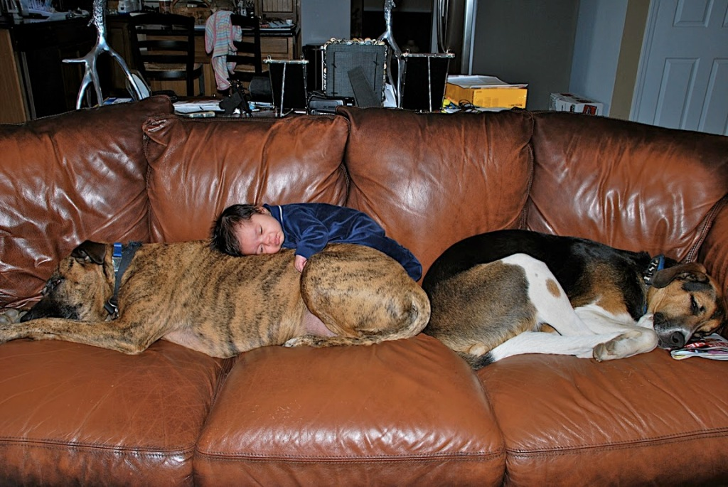Jada, Caesar, and Kyle Sleeping On Couch