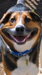 Smiling Caesar